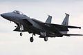 F15 Eagle - RIAT 2009 (3798198174).jpg