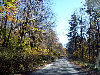 Spruce Knob - Forest Road 112 leading up to the summit, today paved