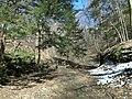 Fall Run Park in Shaler Township, late winter - 38.jpeg