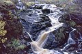Falls on the Black Burn, Glen Muick - geograph.org.uk - 927585.jpg