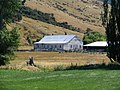 Farm building and stock yard near Berwick, Otago, New Zealand.JPG