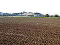 Farmland, Pulloxhill, Beds - geograph.org.uk - 63244.jpg