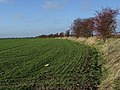 Farmland near Drayton - geograph.org.uk - 290043.jpg