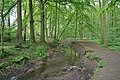 Farmsen - Deepenhorn Graven.jpg