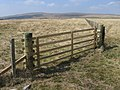 Fence on Moorland looking towards Auchenlongford Hill - geograph.org.uk - 400147.jpg