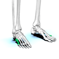 Fifth metatarsal bone02.png