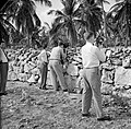 Filmers aan het werk tijdens het koninklijk bezoek, Bestanddeelnr 252-3303.jpg