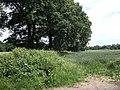 Fineacre Lane - geograph.org.uk - 1913800.jpg