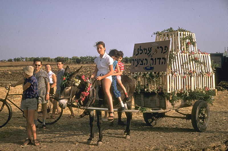 File:Flickr - Government Press Office (GPO) - Children Ride a Donkey Cart.jpg