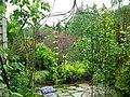 Flickr - brewbooks - Our Garden - May, 2008 (6).jpg