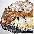 Flint (Vanport Flint, Middle Pennsylvanian; Nethers Flint Quarries, Flint Ridge, Ohio, USA) 193.jpg