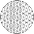 Flower of life-4.67level.png