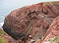 Folded Old Red Sandstone at St Annes Head - geograph.org.uk - 629204.jpg