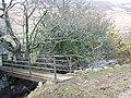 Footbridge over the Mite - geograph.org.uk - 746590.jpg