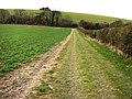 Footpath from Lower Farm to Small Down, near East Meon - geograph.org.uk - 698976.jpg