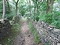 Footpath in Mag Wood - geograph.org.uk - 1373924.jpg