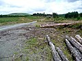 Forgotten logs - geograph.org.uk - 518429.jpg