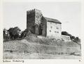 Fotografi på Habsburg slott - Hallwylska museet - 104440.tif