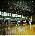 Fotothek df n-32 0000075 Sport, Volleyball-Mannschaft.jpg