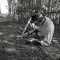 Franc, Obrov, pri Brezovkinih, kleplje koso na star način (v ležé) 1955 (2).jpg