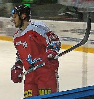 František Skladaný Slovak ice hockey player