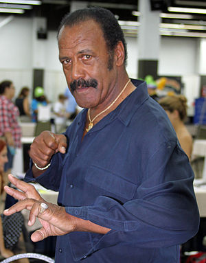 Fred Williamson - Williamson in 2010