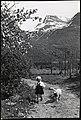 G-240-3. Sommermotiv - liten jente med lam (35002426791).jpg