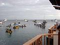 Galapagos2007--54--08-23-07.JPG