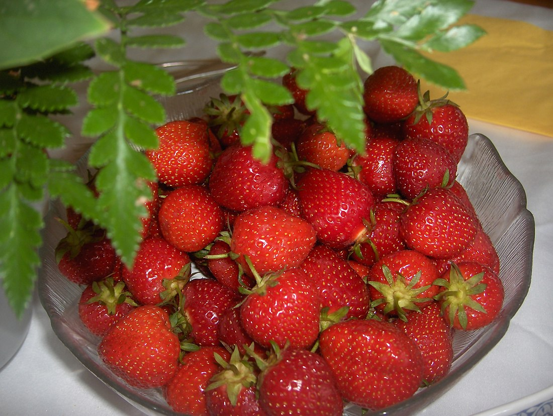 Garden Strawberries in Germany.JPG