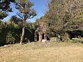Garden of Former Residence of Nabeshima Family in Kojirokuji Area 12.jpg