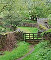 Gate by The Ravenglass and Eskdale Railway at Fisherground Farm - geograph.org.uk - 1520646.jpg