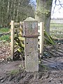 Gatepost and benchmark at Gwysaney - geograph.org.uk - 736033.jpg