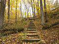 Gfp-wisconsin-governor-dodge-state-park-steps-on-the-hiking-trail.jpg