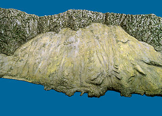 Great Gibraltar Sand Dune - The Great Sand Dune as depicted in the 1865 scale model of Gibraltar, now at the Gibraltar Museum.