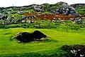 Glencolumbkille - Colourful field near Folk Village - geograph.org.uk - 1340520.jpg