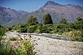 Glenorchy, New Zealand Lord of the Rings Tour - panoramio (5).jpg