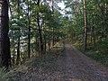 Gmina Piecki, Poland - panoramio (197).jpg
