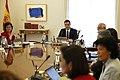 Gobierno de Pedro Sánchez en la XII Legislatura 10.jpg