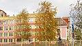 Golden birches in the school. November 2015. - Золотистые берёзки в девятой школе. Ноябрь 2015. - panoramio.jpg