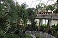 "Gradina Botanica ""Vasile Fati"" (4656651017).jpg"