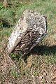 Gradsko groblje u Gornjem Milanovcu, stari deo 40.jpg
