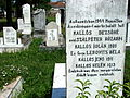Gravestone for Auschwitz Victims - Sighet - Romania.jpg