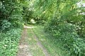 Green Hams Lane - geograph.org.uk - 861447.jpg