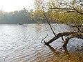 Griebnitzsee - geo.hlipp.de - 29809.jpg