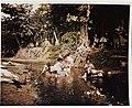 Guam women washing laundry in stream, June 1945.jpg