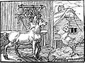 GueroultCoqCheval.jpg