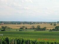 Gundolsheimvuebollenberg.JPG