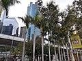 HK SW 上環 Sheung Wan 民光街 Man Kwong Street near 中環 Centrel Ferry Piers 維多利亞海港 Victoria Harbour February 2020 SS2 12.jpg