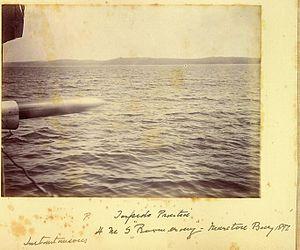 HMS Boomerang launching torpedo Moreton Bay 1892.jpg