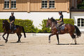 Haras national Avenches - 6.jpg